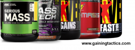 top mass gainers