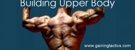 best exercises for building upper body