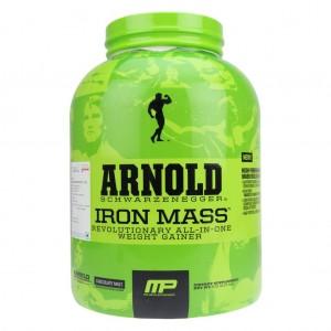 best mass gainer protein powder