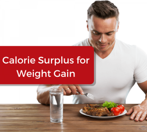 Calorie Surplus for Weight Gain
